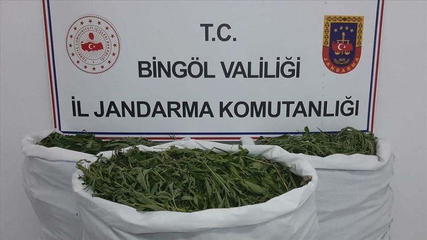 Bingöl'de uyuşturucu operasyonu
