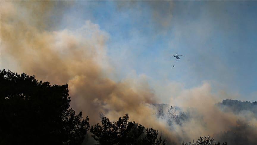 Menderes'teki orman yangını ile ilgili 1 kişi gözaltında