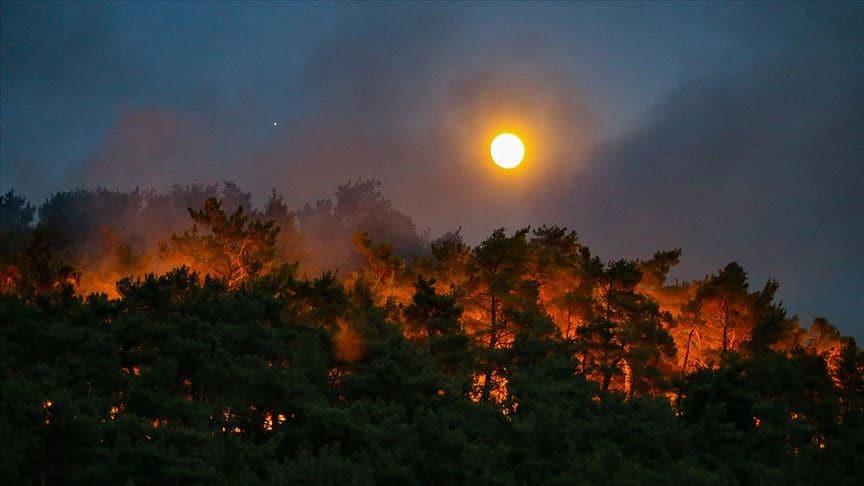 Orman yangınlarında sabotaj şüphesi