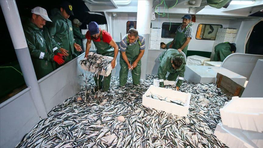 Bakan Pakdemirli açıkladı! Denizlerde av sezonu tarihleri belli oldu