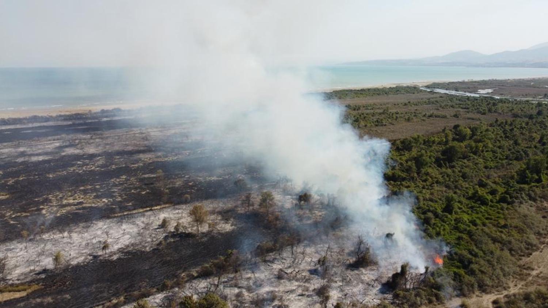 Kızılırmak Deltası Kuş Cenneti'nde korkutan yangın