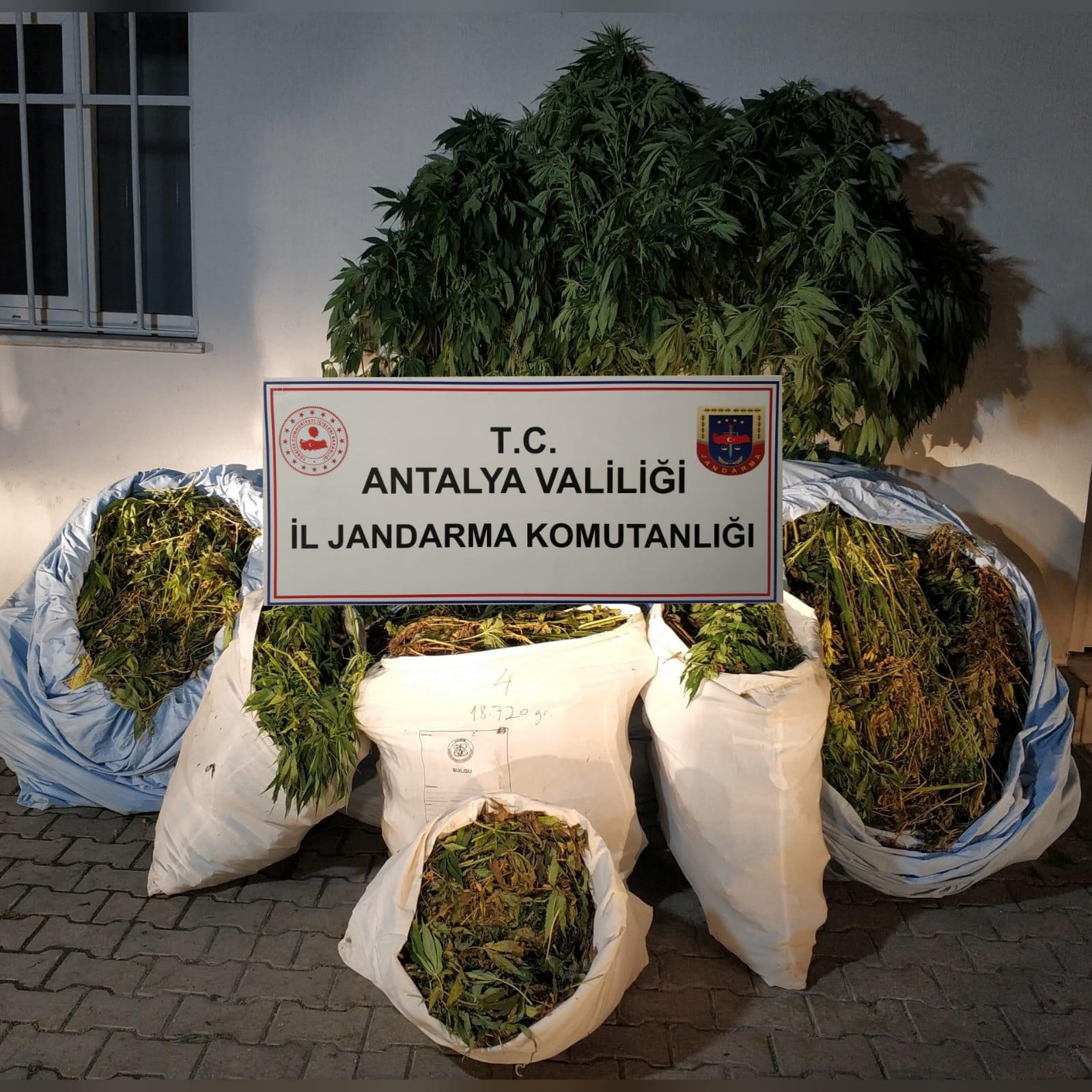 Antalya'da uyuşturucu tacirlerine operasyon! 161 kilo  esrar ele geçirildi