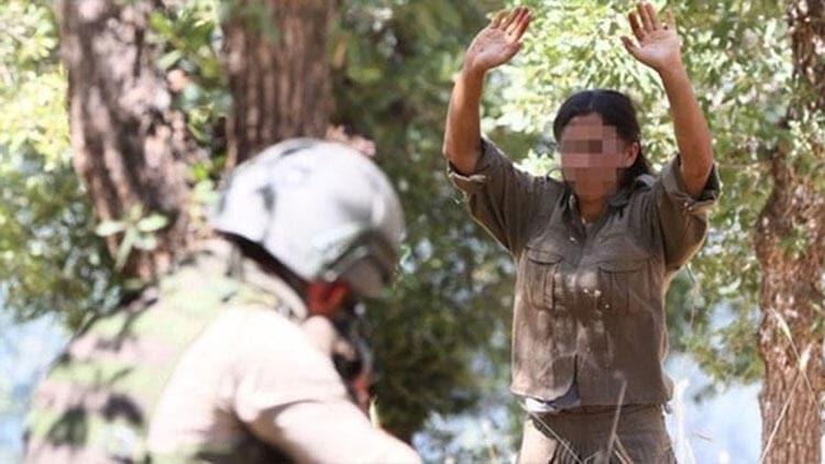 Van'da 1 terörist, güvenlik güçlerimize teslim oldu