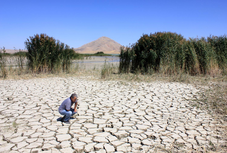 Son 60 yılda 3 Van gölü yok oldu!