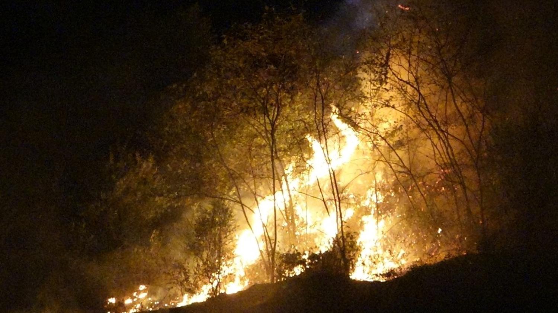 Trabzon'da örtü yangını!