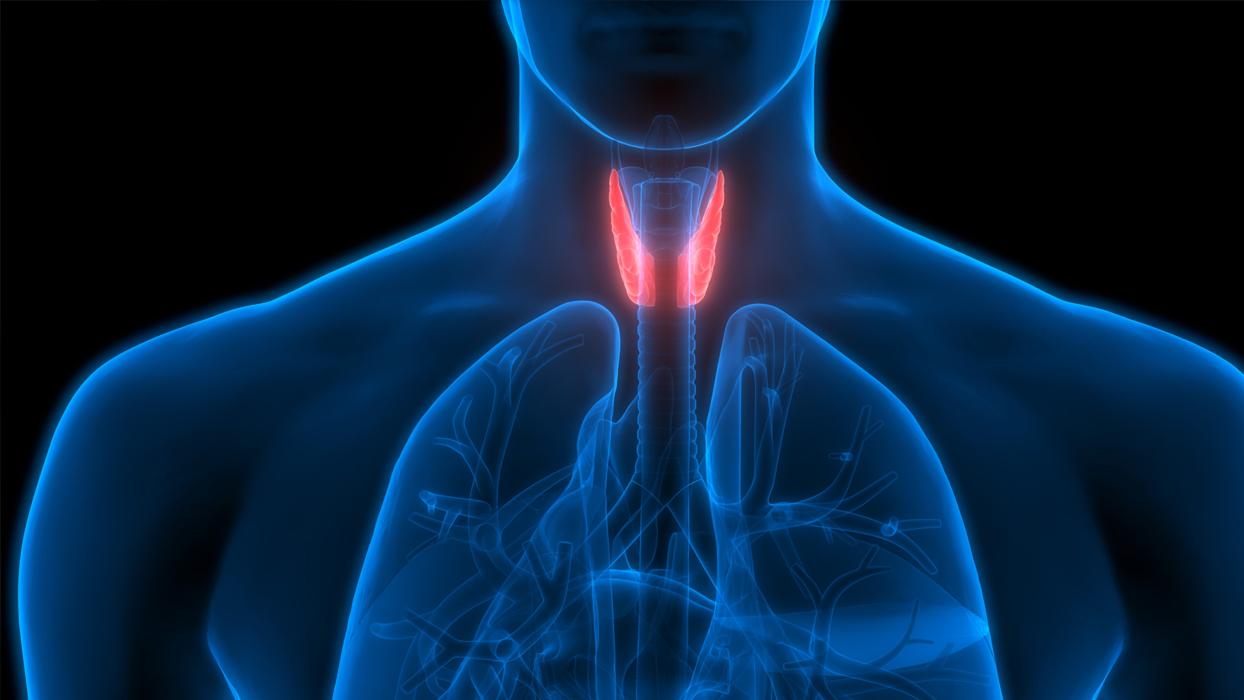 Tiroidin en güvenilir çözümü cerrahide