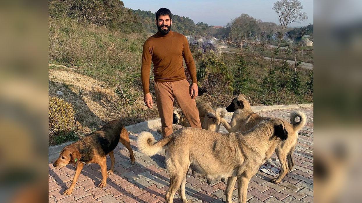 Kuruluş Osman'ın yıldızı Burak Özçivit set arasında köpeklere koştu