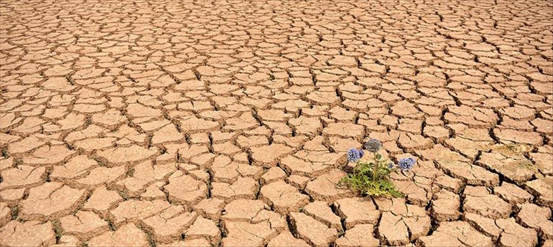 BM Çevre Programı: Dünya bu yüzyılda 3 dereceden fazla ısınmaya doğru gidiyor
