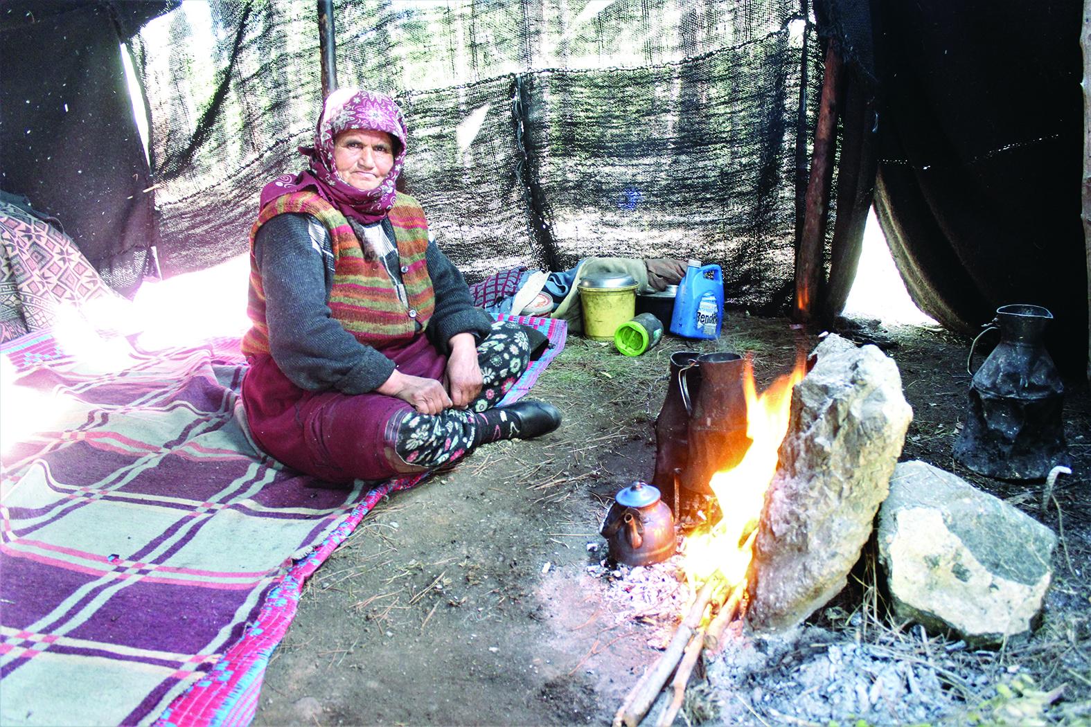 Tüm hayatını ormanda çadırda geçirdi