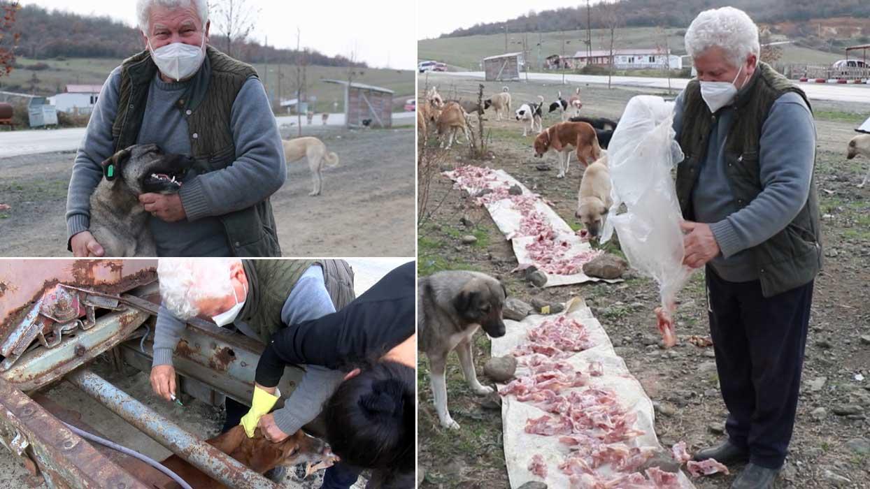Sokak hayvanlarının dedesi 71 yaşında veteriner oldu