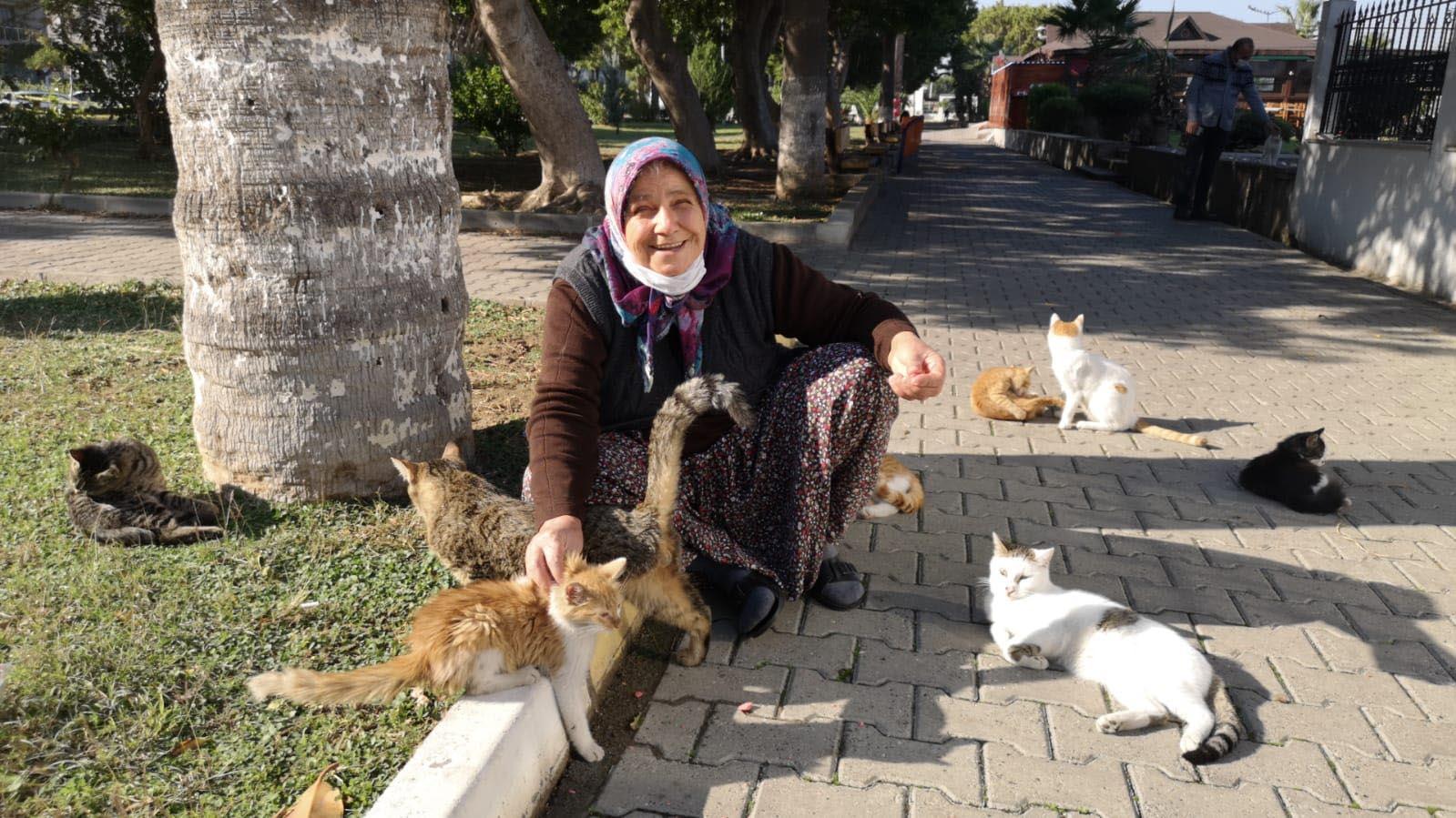 13 yıldır sokaktaki kedilerin dostu