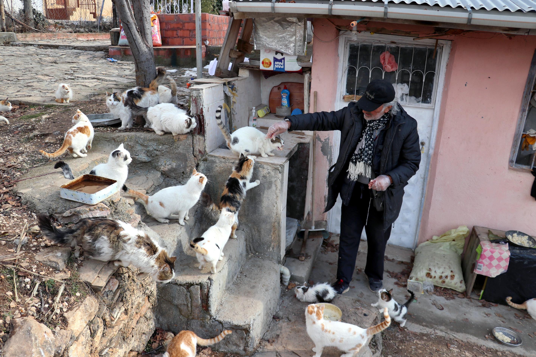 Yaşamını sokak hayvanlarına adadı