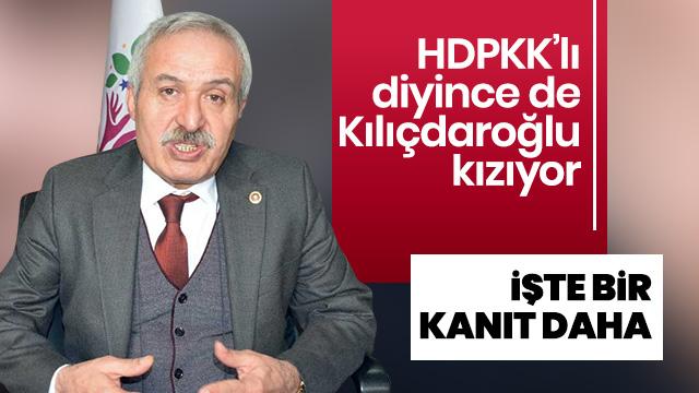 HDPKK'lı diyince de kızıyorsunuz... Adnan Selçuk Mızraklı KCK paralarına kuryelik yapmış