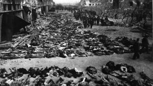 Fransa 7 bin 300 sivilin ölümüne neden oldu!