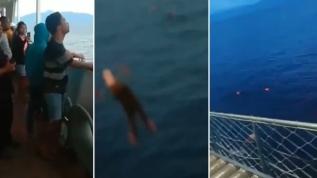 Haberi duyan denize atladı... Endonezya'da bir feribotta koronavirüs paniği