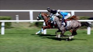 Ertelenen at yarışları için karar mayıs ayının ilk haftası verilecek