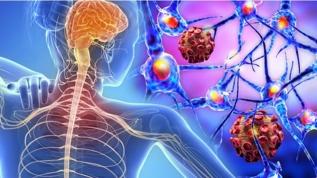 Uzman doktorlardan MS hastalarına koronavirüs uyarısı