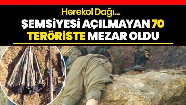 Terör örgütüne Mayıs darbesi! Sözde sorumlularının da bulunduğu Herekol dağı, 70 teröriste mezar oldu