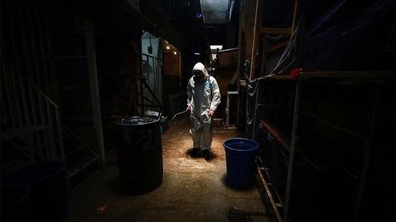 Brezilya ve Meksika'da can kayıpları artıyor